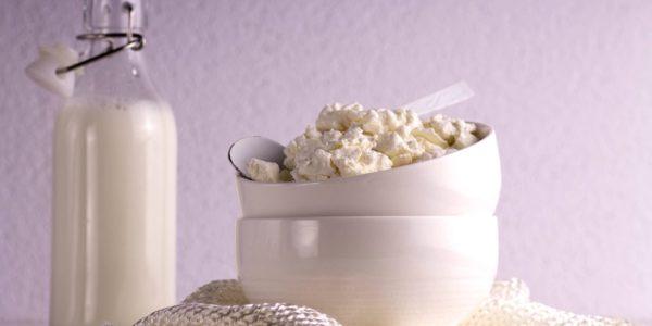 probiotyk nabiał jogurt ser biały naturalne probiotyki