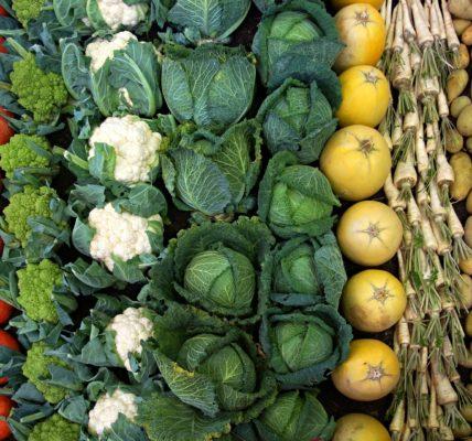 warzywa tabela wartości odżywczych
